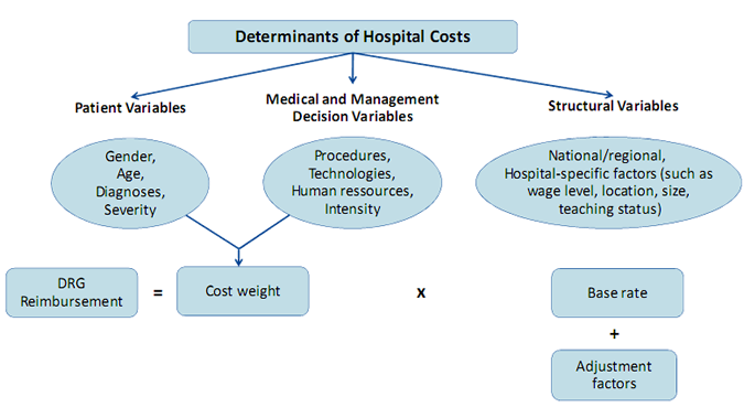 Figure 1 Determinants of hospital costs and DRG-reinforcements